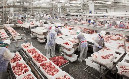 «Мираторг» увеличил производство высококачественной говядины на 24% в первом полугодии 2016 года